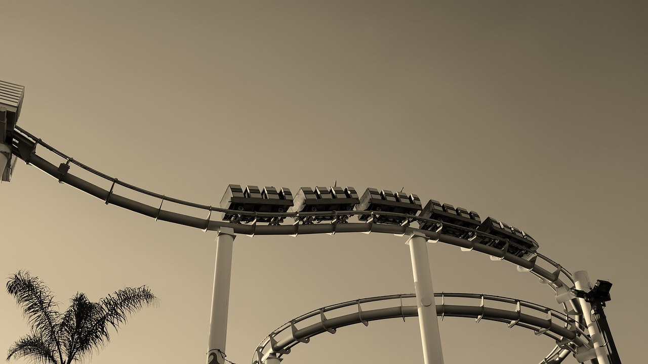 The Tech Industry: Riding Roller Coasters